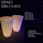 Sidney Işıklı Saksı